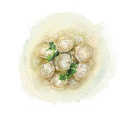 Dumplings in broth, drawn with watercolor