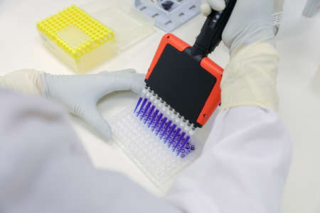 Lab testing. Scientist holding Multi channel pipette. Medical research in a lab. Corona Virus and vaccine development Foto de archivo
