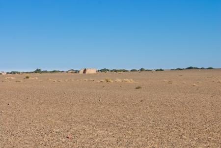 quicksand: desert in Inner Mongolia, China
