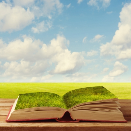 book cover design: Open book with grass on wooden table over beautiful meadow and sky.  Stock Photo