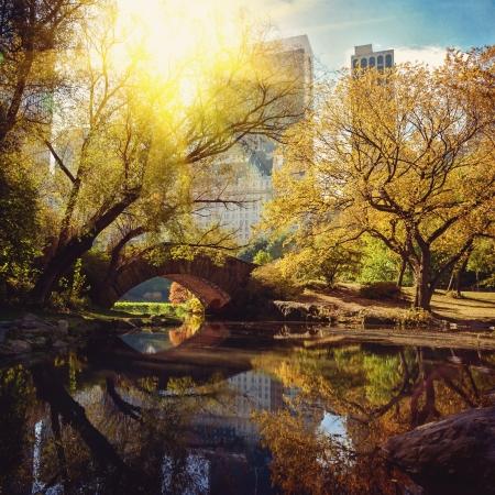 dia soleado: Estanque de Central Park y el puente. Nueva York, EE.UU..