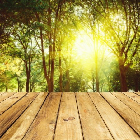 burst background: Empty wooden deck table over forest background
