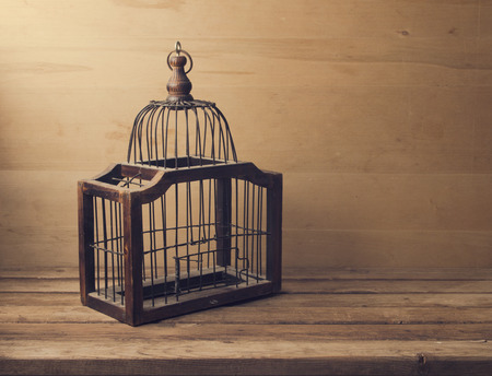 animal  bird: Wooden empty bird cage on wooden table and background
