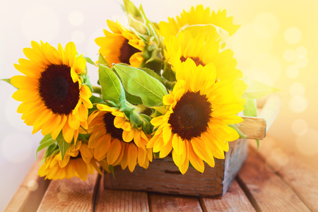 Beautiful sunflower bouquet in wooden box on wooden tabletop Stockfoto