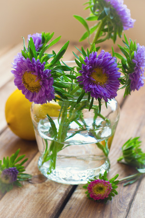 Beautiful aster flower bouquet on wooden table