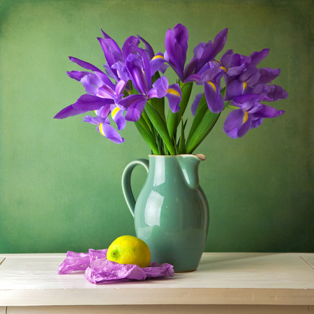 Beautiful still life with iris flower over grunge background Stock Photo