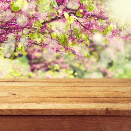 mesa de madera: Mesa cubierta de madera vacía sobre el fondo hermoso de primavera Foto de archivo