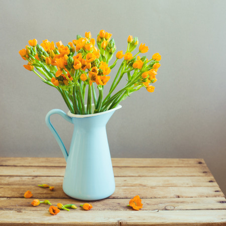 Orange flowers in blue jug on wooden table Stock Photo