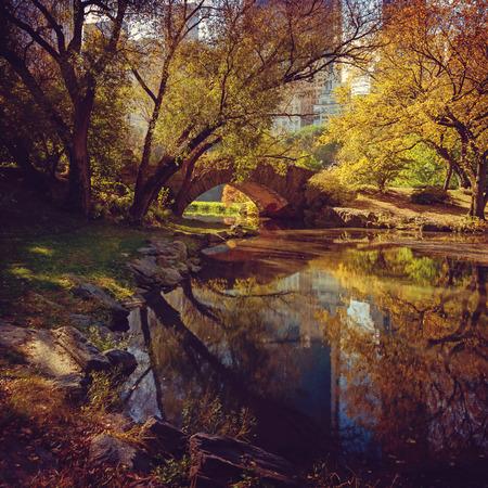 central park: Central Park pond in New York, USA. Stock Photo