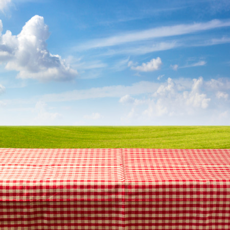 picnic cloth: Empty table covered with checked tablecloth over green meadow and blue sky