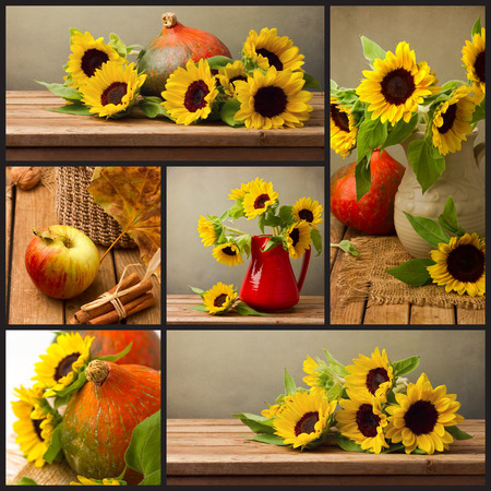 Collage of autumn season photos with sunflowers and pumpkin