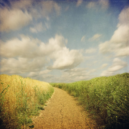 endless: Endless road across field in retro style Stock Photo