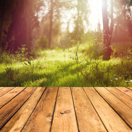 forest products: Wooden floor terrace over forest background Stock Photo