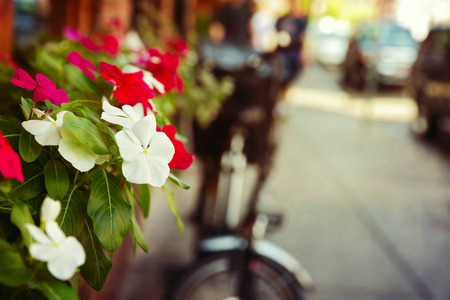 poster bed: Flowers on street.