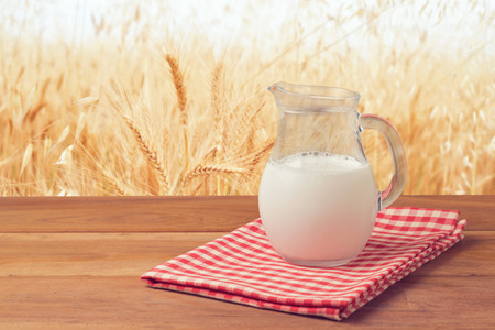 milk jugs: Milk jug over wheat field background