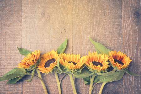 girasol: Fondo del otoño con los girasoles en la tabla de madera. Vista desde arriba. efecto de filtro retro