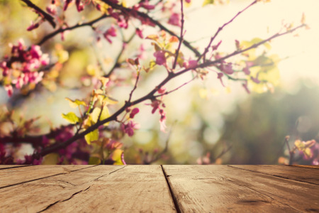 Empty wooden vintage table board over spring blossom bokeh background Stockfoto