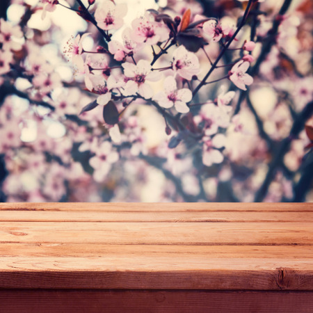 flowers bokeh: Empty wooden deck table over spring blossom flowers bokeh background