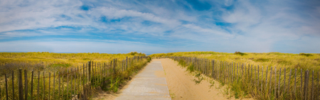 duna: Summer holiday panoramic sea beach background. Path to the beach with beautiful sky and grass.