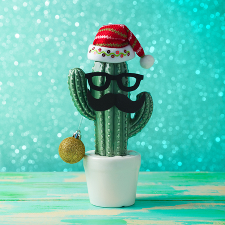 christmas cactus: Christmas in tropical climate concept. Cactus as hipster christmas tree with santa hat Stock Photo
