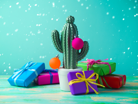 Christmas in tropical climate concept. Cactus as alternative christmas tree with gift boxes