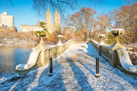 Central Park. New York. USA in winter covered with snow. Bow bridge. Imagens