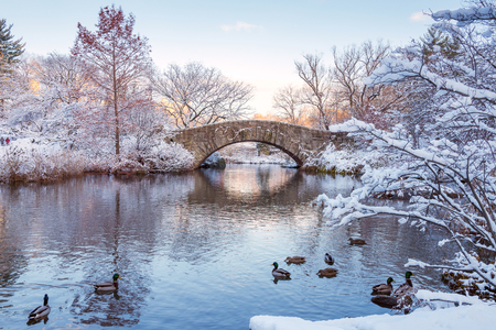 Central Park. New York. USA in winter covered with snow. Gapstow bridge.