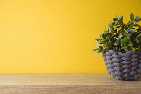 Empty wooden shelf with plant over yellow wall ibackground. Kitchen mock up for design 免版税图像