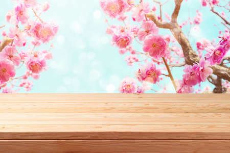 Empty wooden table over beautiful cherry blossom background. Spring and easter mock up for design