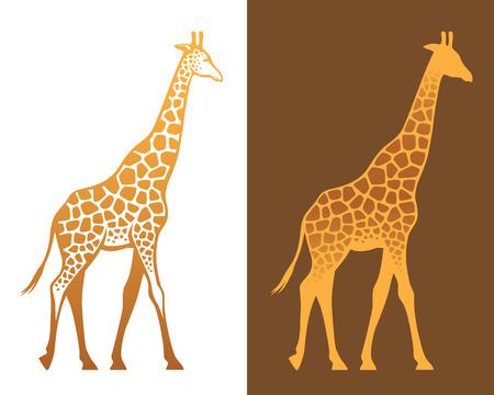 Giraffe met vlekken kleurrijke illustratie en silhouet geïsoleerd op wit en bruin achtergronden Vector Illustratie