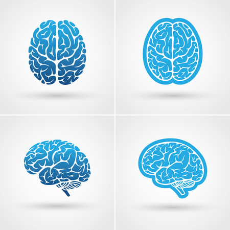 Set of four blue brain icons. Top and side view