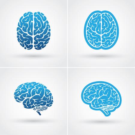 Zestaw czterech niebieskich ikon mózgu. Widok z góry iz boku