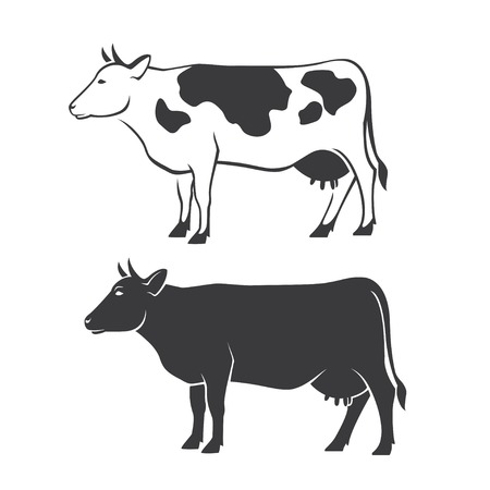 Two black cow silhouettes in vector