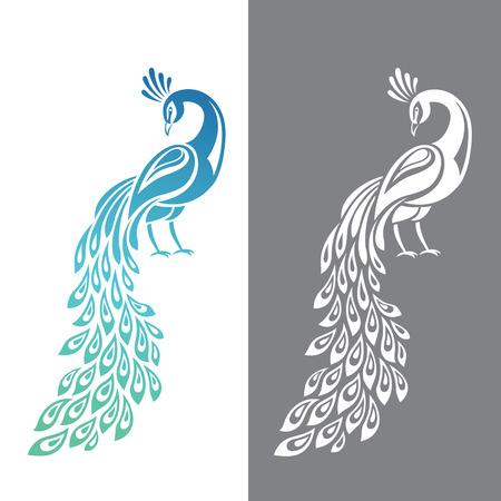 Ilustracji wektorowych pawia w wariantach kolorowych i monochromatycznych