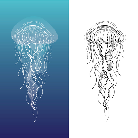Abstract graphic illustration of jellyfish in vector
