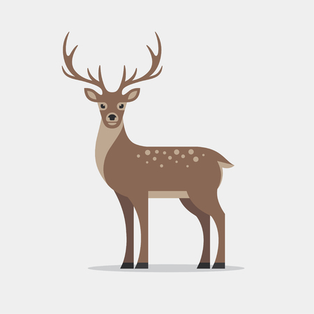 Deer illustration in flat style.