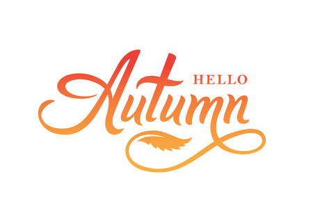 Hello autumn calligraphy text for card, banner or poster design. Hand drawn lettering isolated on white background.