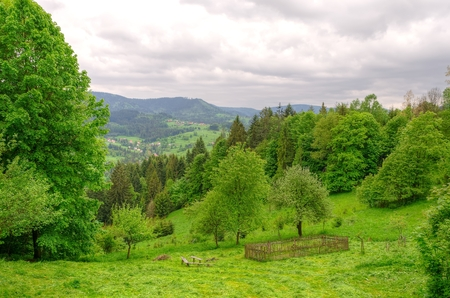 hurdle: Mountain landscape in spring. Picturesque view stretches over the valley and wooden hurdle on a green hill beskids mountains Poland.