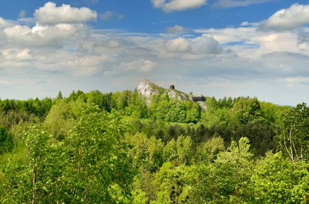 jura: Highland landscape. Man climbing on Jurassic limestone rock situated highland area of Jura in Poland. Stock Photo