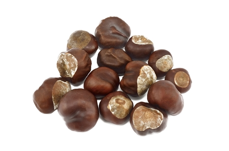 conkers: Set of conkers. Bunch of horse chestnuts isolated on white background. Stock Photo