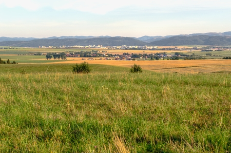 clearing: Rural summer landscape. Clearing in Nova Lesna village in Slovakia.