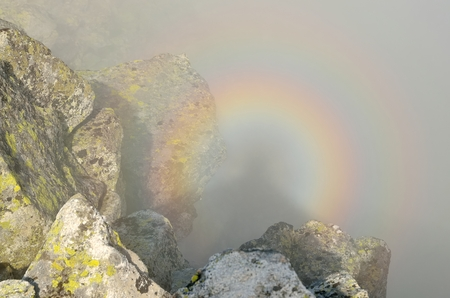 spectre: Mountain sunrise landscape. A brocken spectre in High Tatra Mountains, Slovakia.