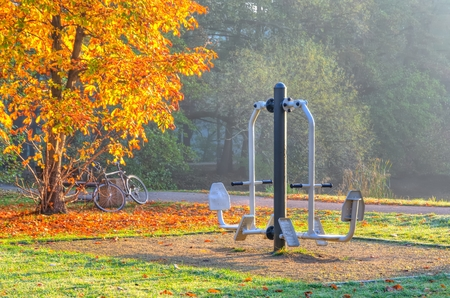 apparatus: Outdoor gym. The exercise apparatus in the autumn park.