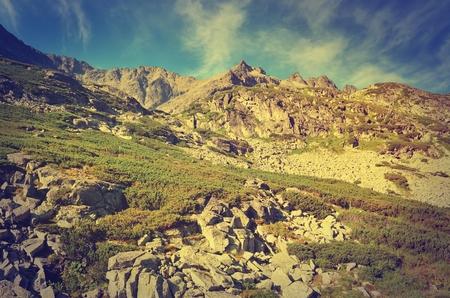 rocky peak: Summer mountain landscape in vintage style. Beautiful rocky peak in High Tatra, Slovakia.