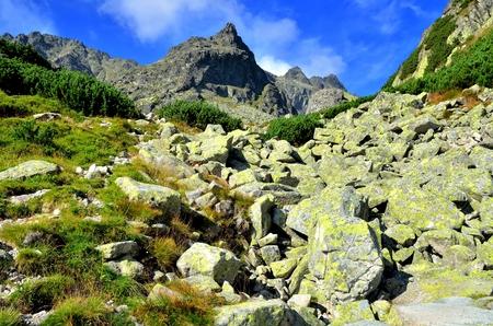 Summer mountain landscape. Rocky peaks in High Tatra, Slovakia.