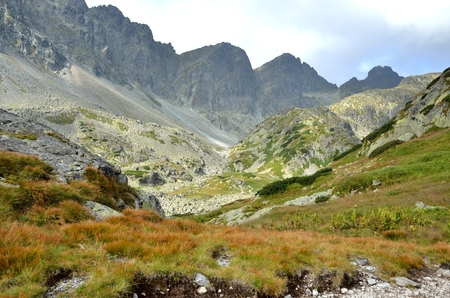 Summer mountain landscape. Beautiful mountain valley and rocky peaks in High Tatra, Slovakia.