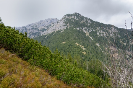 rocky peak: Spring cloudy mountain landscape. Mountain rocky peak in the clouds in Western Tatra, Poland.