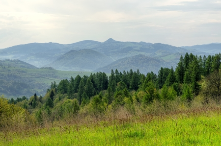 forested: Spring mountain landscape. Forested Pieniny Mountains in Poland. Stock Photo