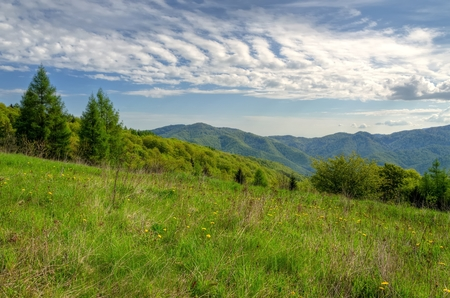 forested: Spring mountain landscape. Green meadow and forested hills. Stock Photo