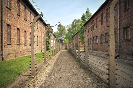concentration camp: OSWIECIM, POLAND - MAY 12, 2016: Masonry blocks and fences with barbed wire in concentration camp Auschwitz-Birkenau in Oswiecim, Poland.